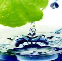 Как обеспечить себя чистой и лечебной водой