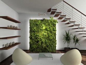 Эко-дизайн помещений
